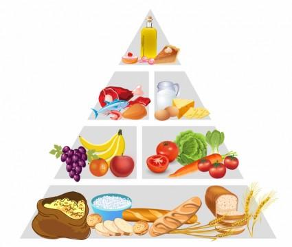 food_pyramid_311984