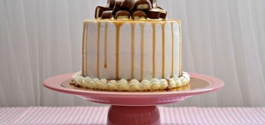 twix cake 951 tss