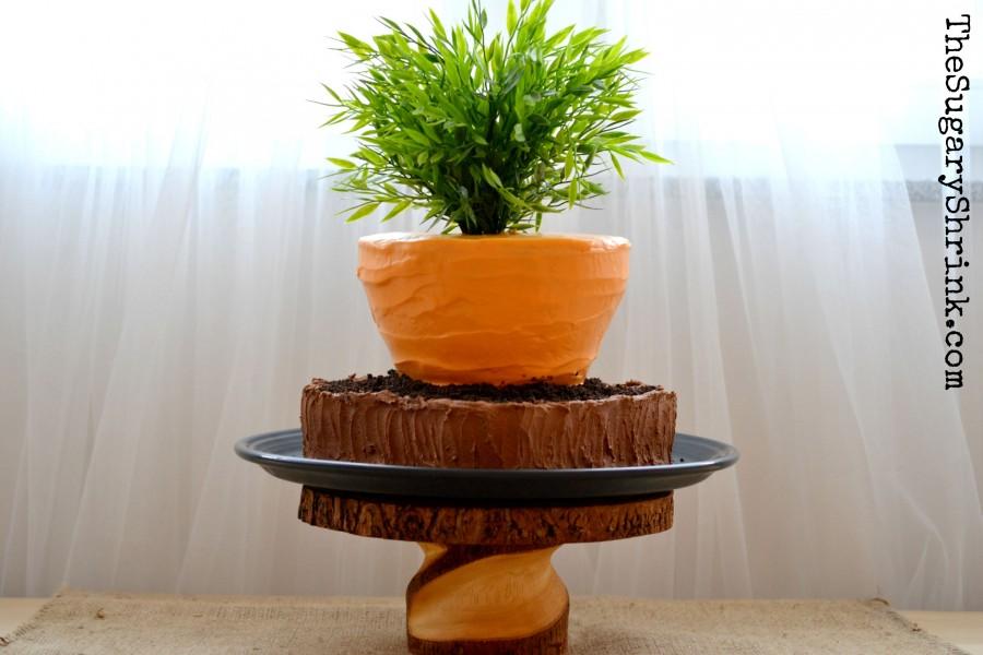 carrot cake 739 tss