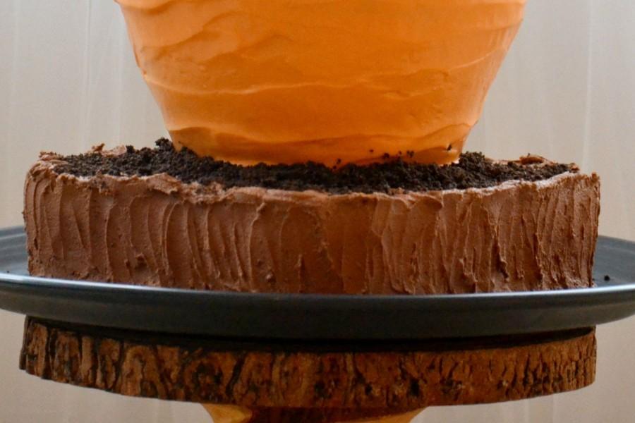 carrot cake 750 tss